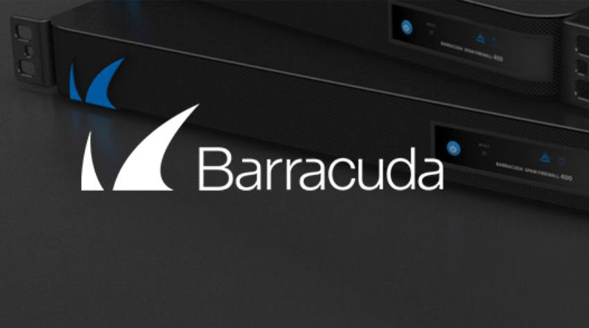 Barracuda-insights-succeess